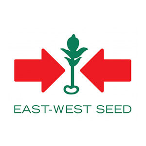 EAST-WEST SEED logo featured image